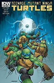 Teenage Mutant Ninja Turtles #41