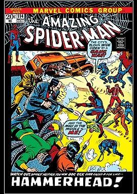 Amazing Spider-Man (1963-1998) #114