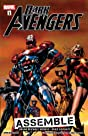 Dark Avengers Vol. 1: Assemble