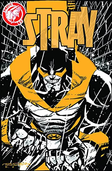 Stray #1