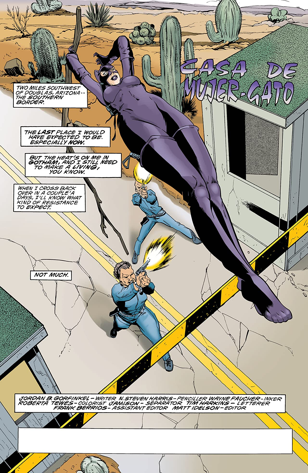 Catwoman (1993-2001) #87