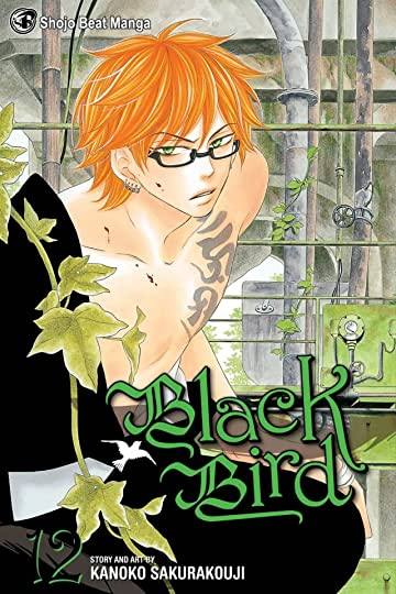 Black Bird Vol. 12