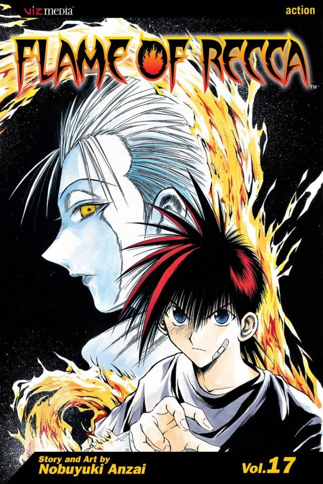 Flame of Recca Vol. 17