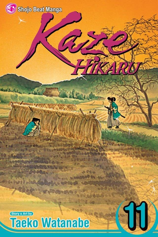 Kaze Hikaru Vol. 11