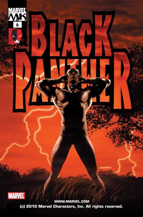 Black Panther (2005-2008) #6