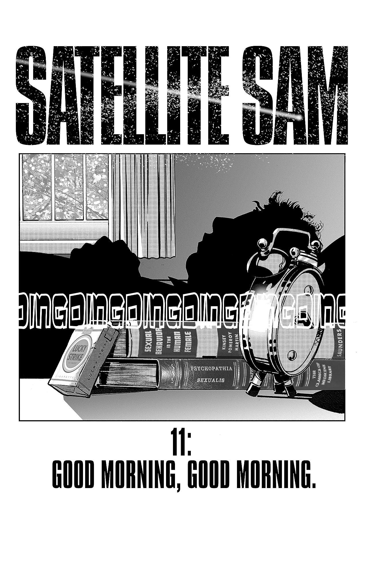 Satellite Sam #11