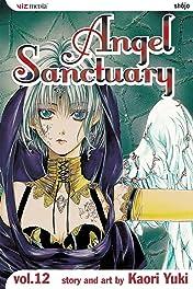 Angel Sanctuary Vol. 12