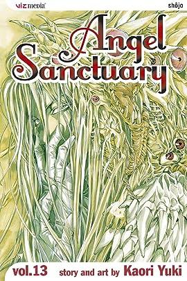 Angel Sanctuary Vol. 13