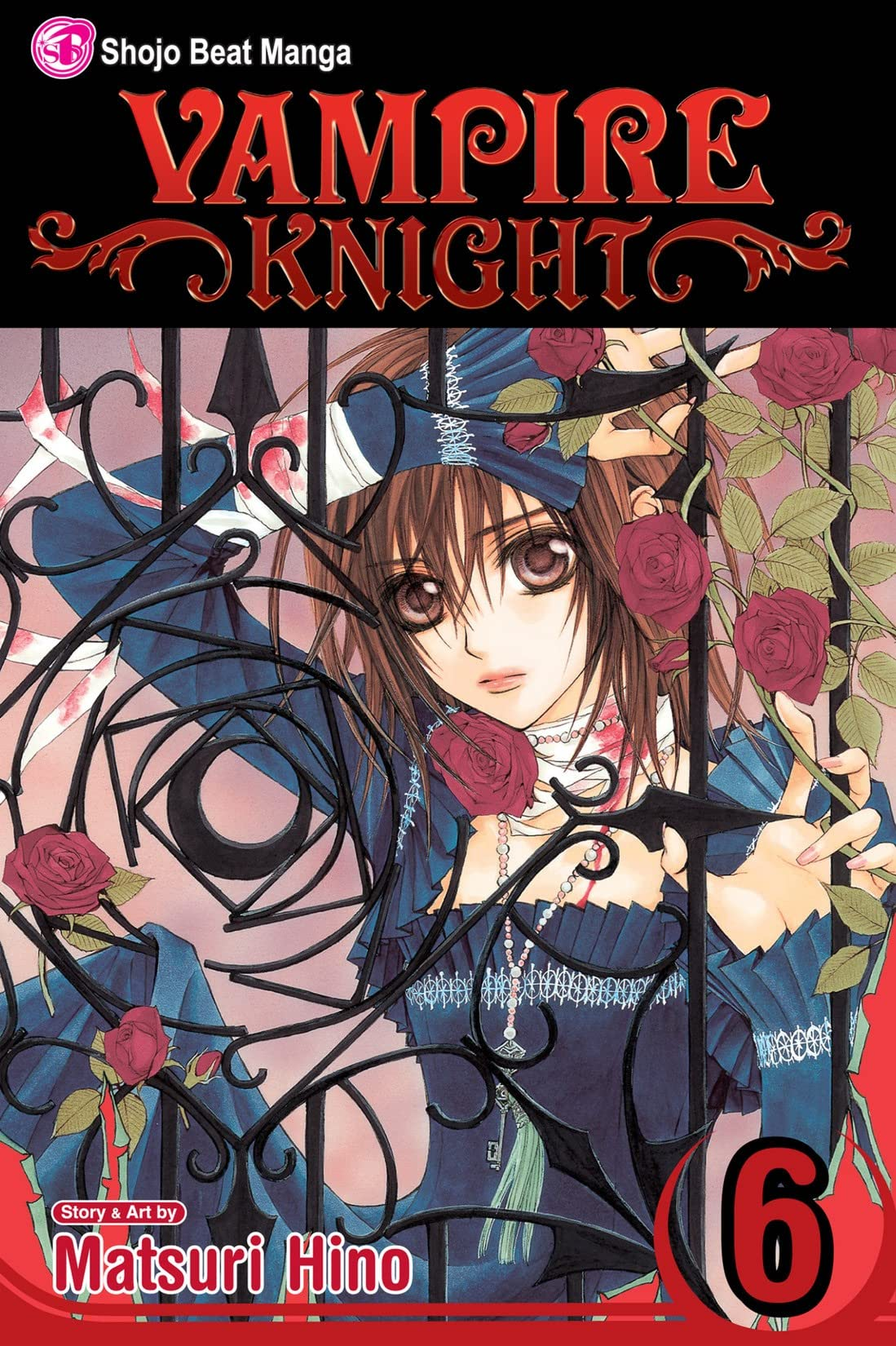 Vampire Knight Vol. 6