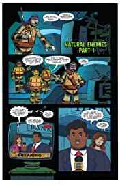 Teenage Mutant Ninja Turtles: New Animated Adventures #21