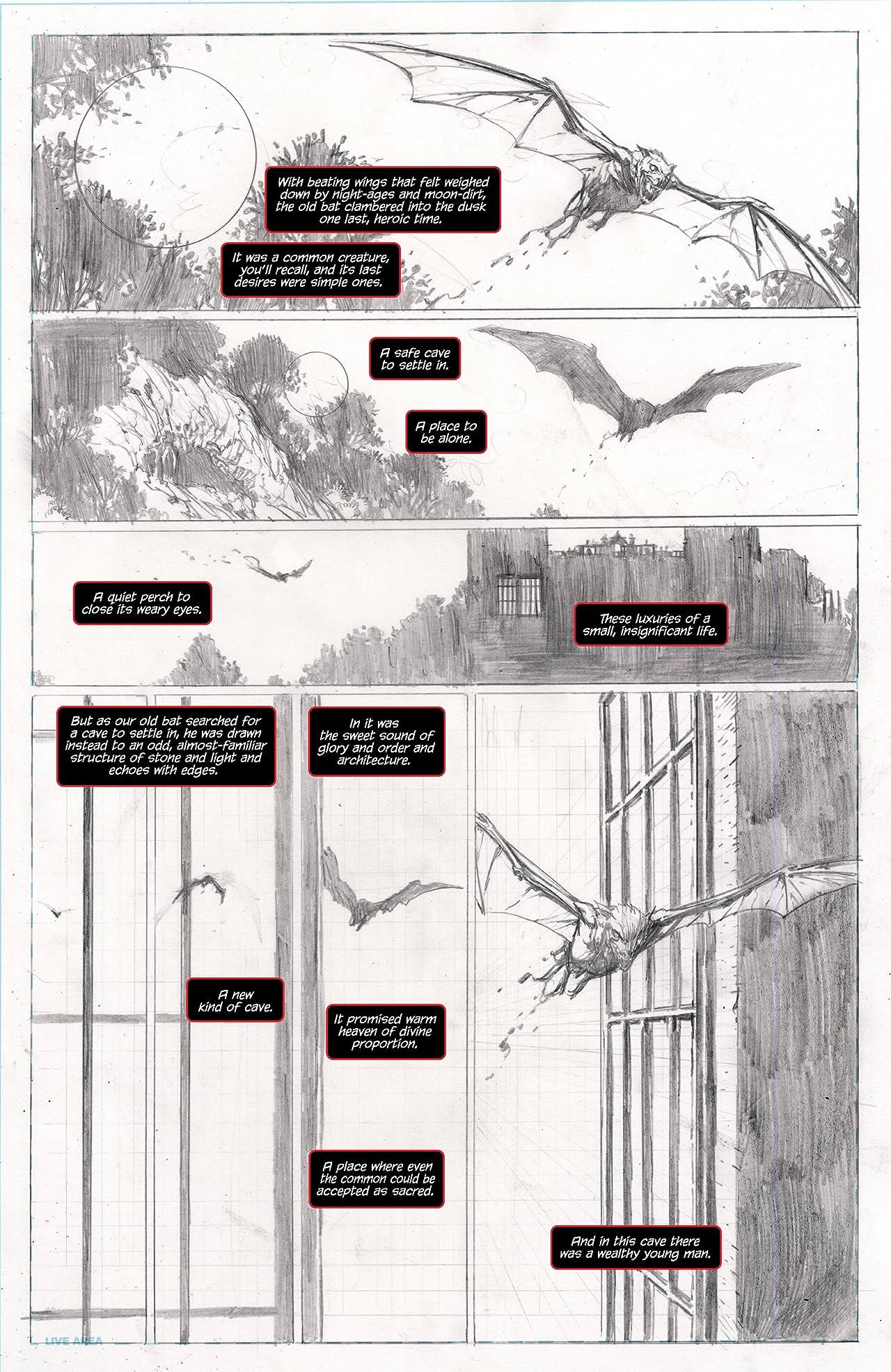 Batman: The Dark Knight Unwrapped by David Finch