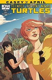 Teenage Mutant Ninja Turtles: Casey & April #1 (of 4)