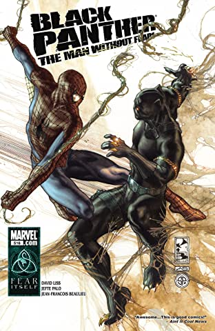 Black Panther: The Man Without Fear (2010-2012) No.516
