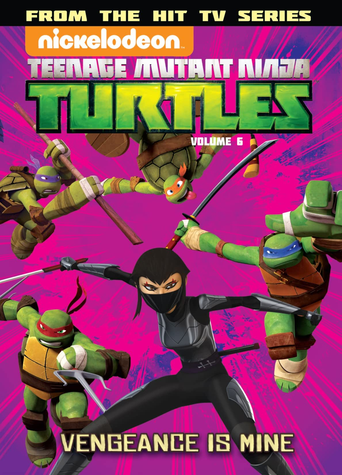 Teenage Mutant Ninja Turtles: Animated Vol. 6: Vengeance Is Mine