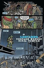 Teenage Mutant Ninja Turtles Micro Series #4: Leonardo