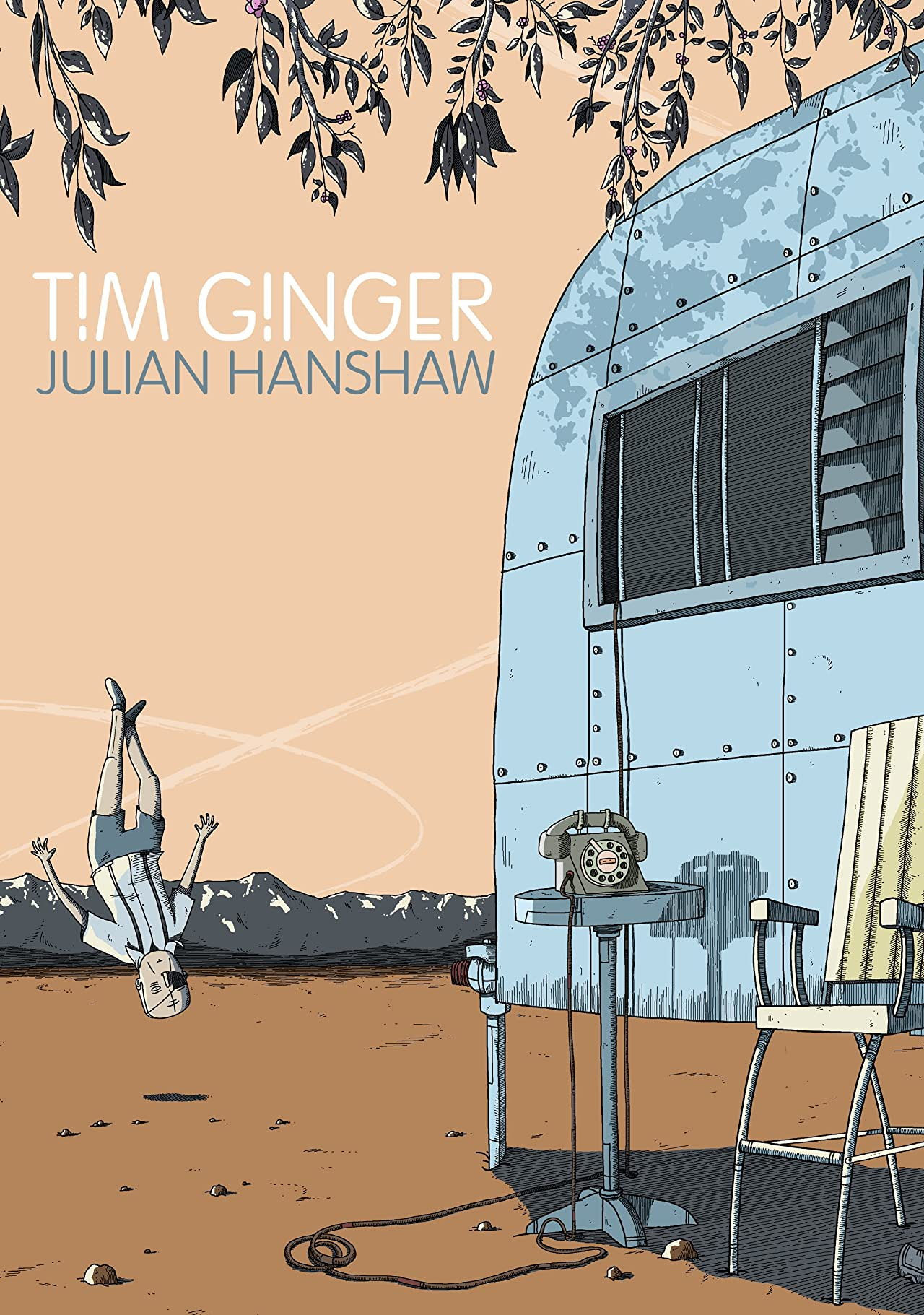 Tim Ginger
