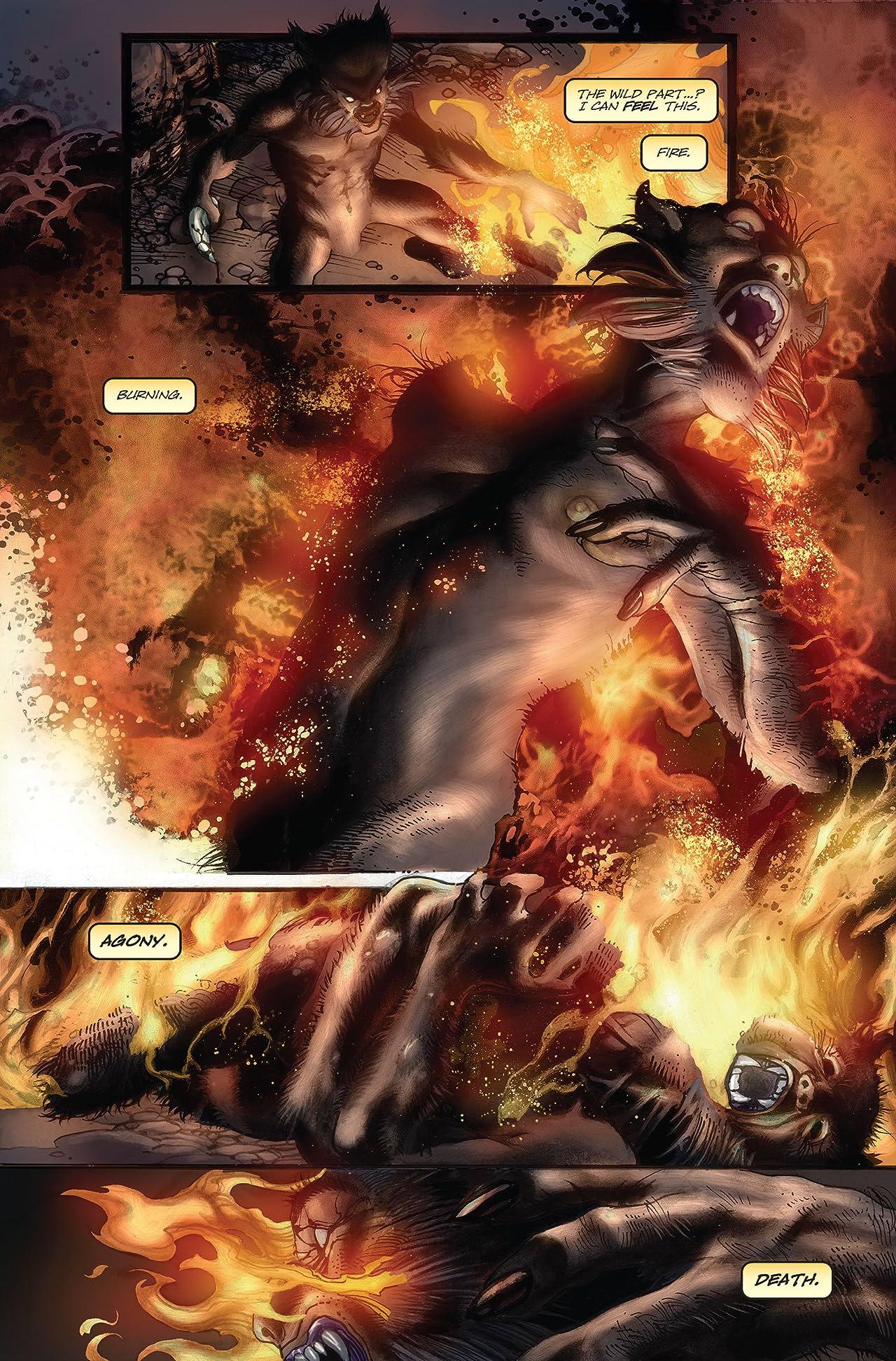 Wolverine (2003-2009) #51