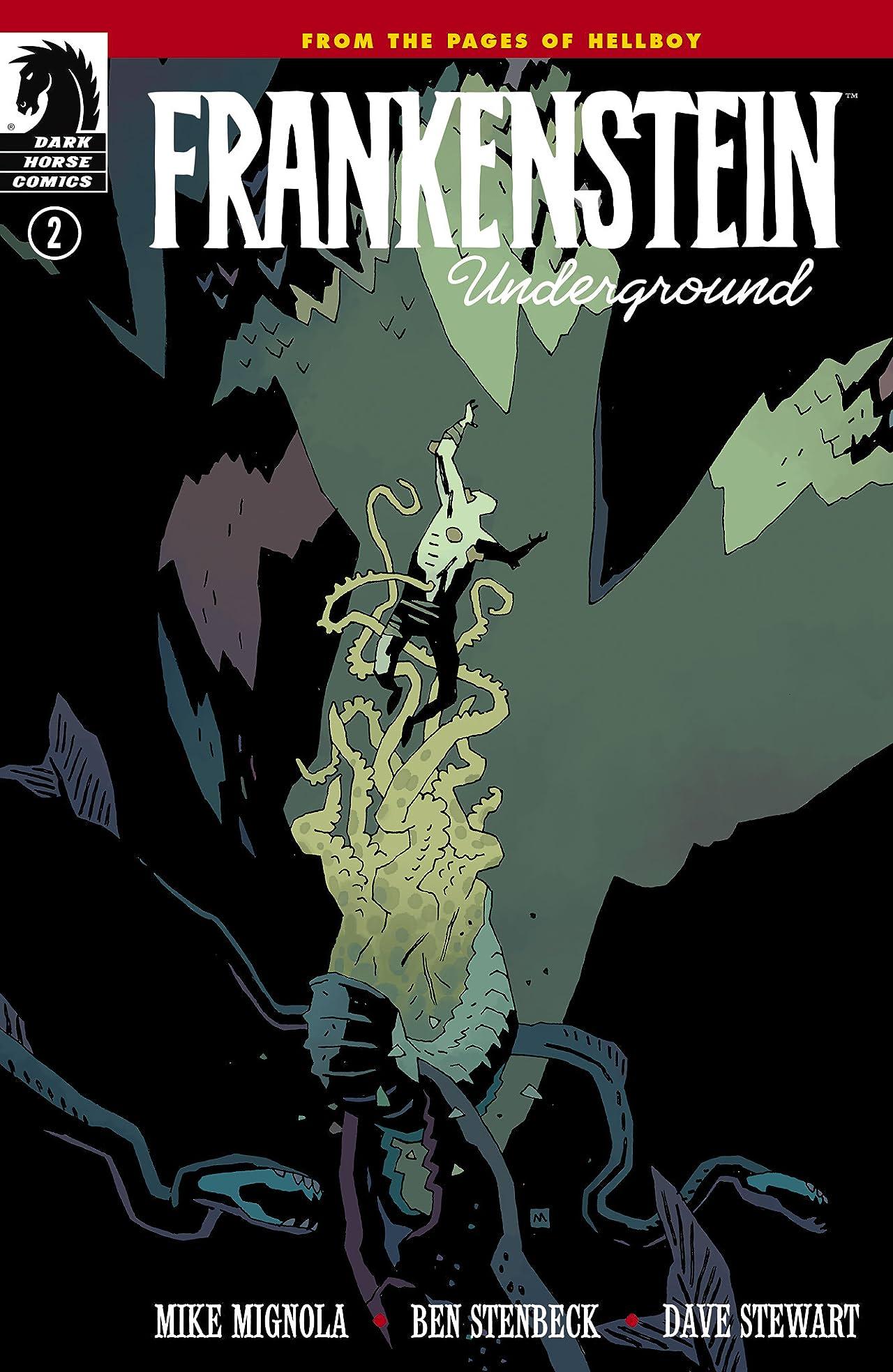 Frankenstein Underground #2