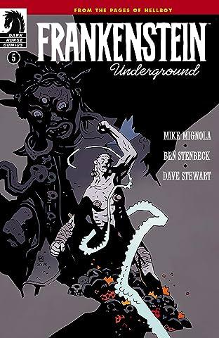 Frankenstein Underground #5