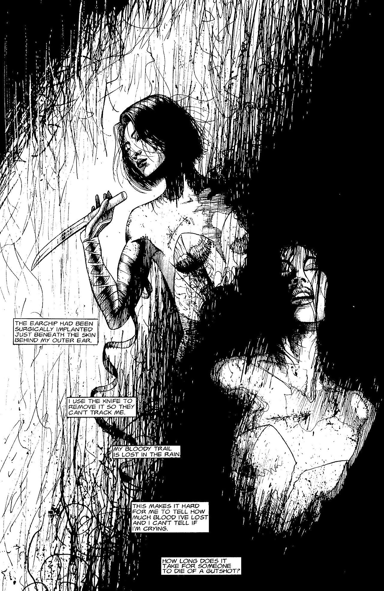 Kabuki vol. 2 #1