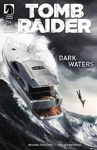 Tomb Raider #14