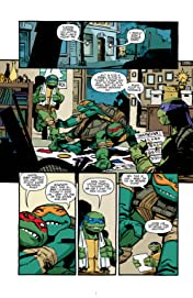 Teenage Mutant Ninja Turtles #13