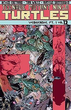 Teenage Mutant Ninja Turtles Tome 12: Vengeance, Part 1
