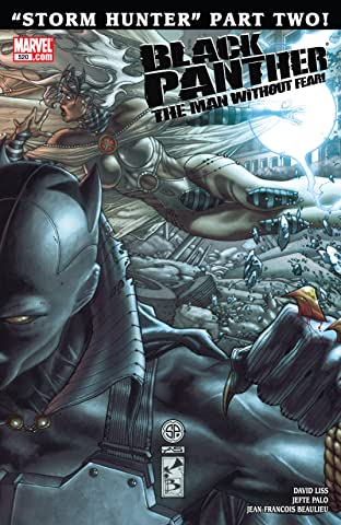Black Panther: The Man Without Fear (2010-2012) No.520