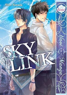 Sky Link: Preview