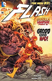 The Flash (2011-2016) #14