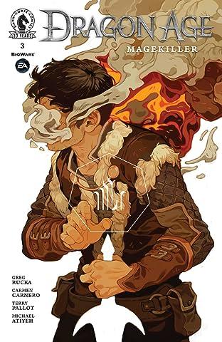 Dragon Age: Magekiller No.3