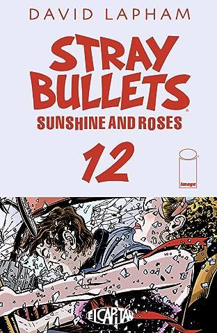 Stray Bullets: Sunshine & Roses #12