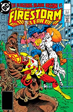 The Fury of Firestorm (1982-1990) No.2