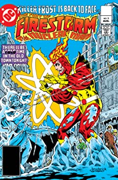 The Fury of Firestorm (1982-1990) No.3