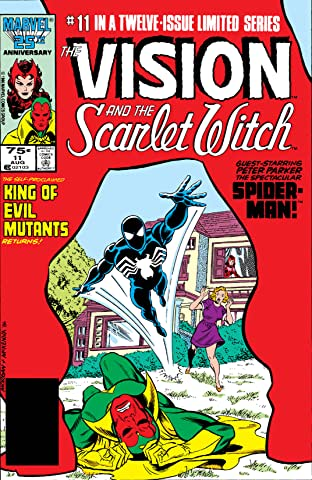 Vision and the Scarlet Witch (1985-1986) #11 (of 12)