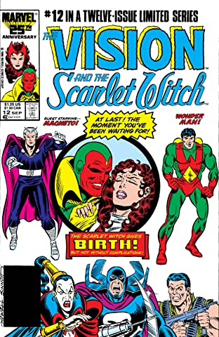 Vision and the Scarlet Witch (1985-1986) No.12 (sur 12)