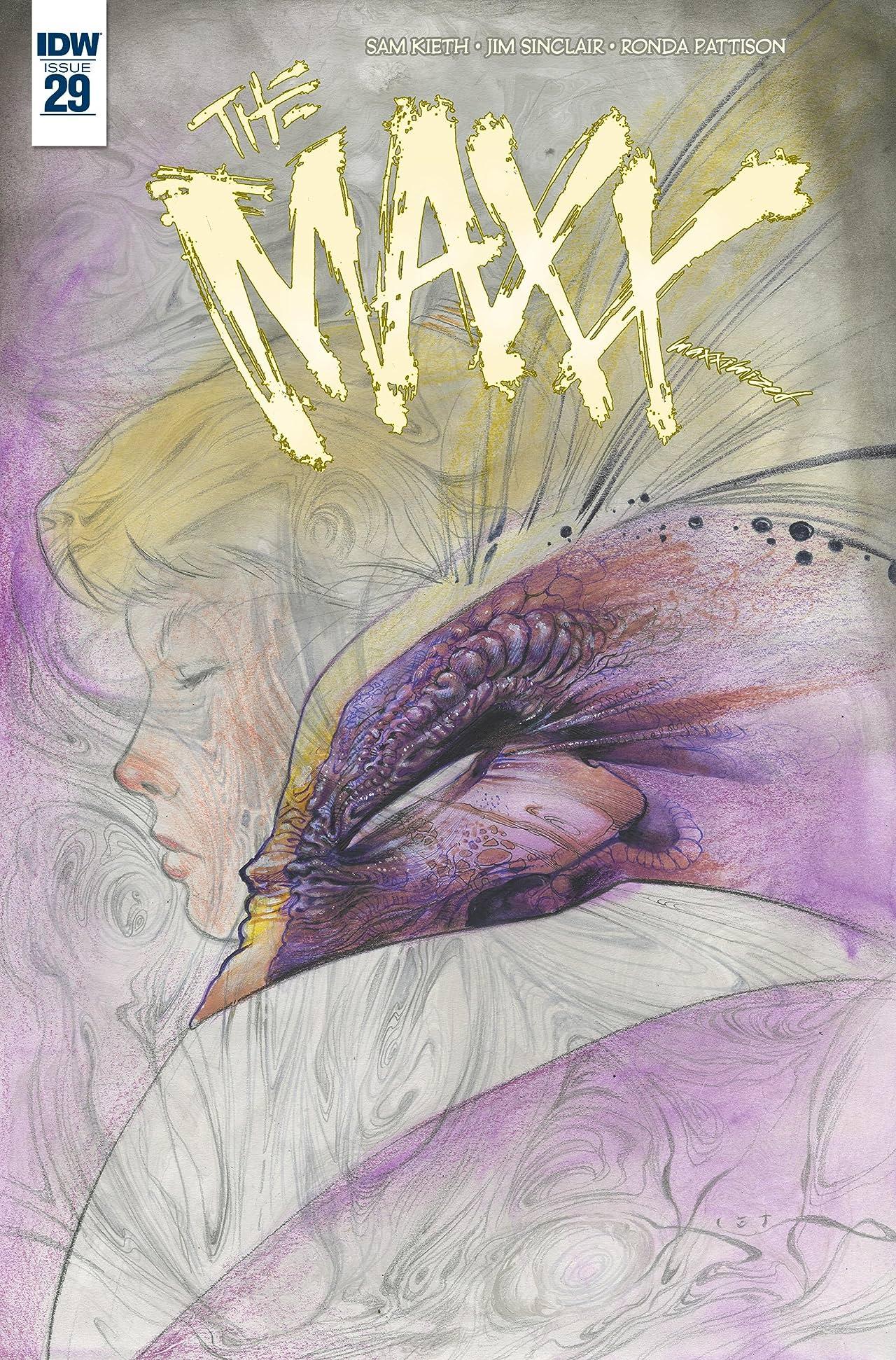The Maxx: Maxximized #29