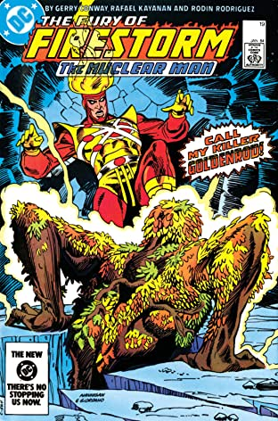 The Fury of Firestorm (1982-1990) #19