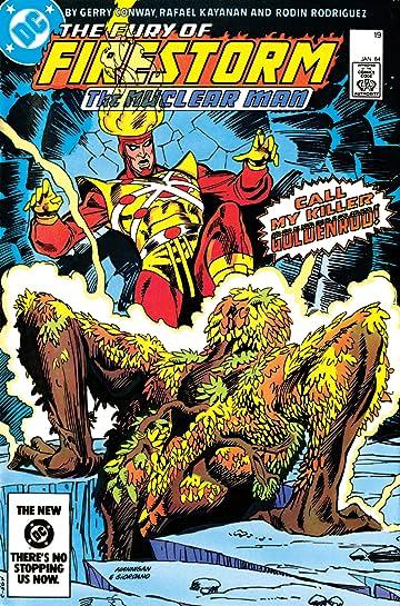 The Fury of Firestorm (1982-1990) #19