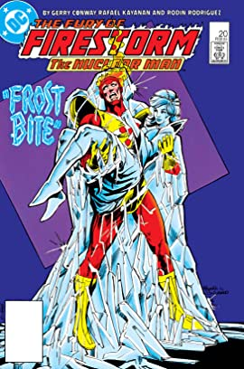 The Fury of Firestorm (1982-1990) #20