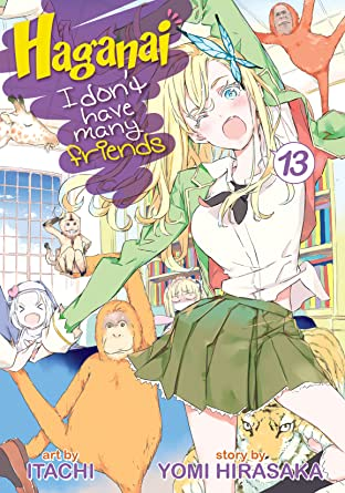 Haganai: I Don't Have Many Friends Vol. 13