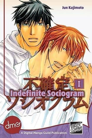 Indefinite Sociogram Vol. 1