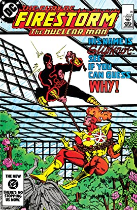 The Fury of Firestorm (1982-1990) #28