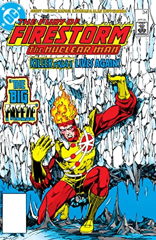 The Fury of Firestorm (1982-1990) #34