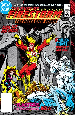 The Fury of Firestorm (1982-1990) #35