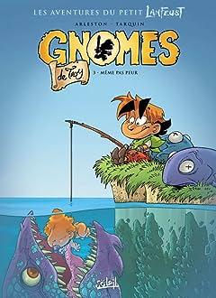 Gnomes de Troy Tome 3: Même pas peur