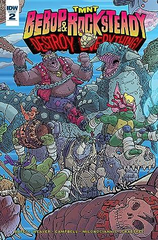 Teenage Mutant Ninja Turtles: Bebop & Rocksteady Destroy Everything No.2