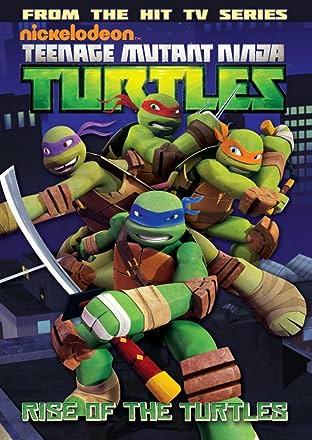 Teenage Mutant Ninja Turtles: Animated Tome 1