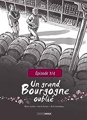 Un Grand Bourgogne Oublié: Chapitre 3