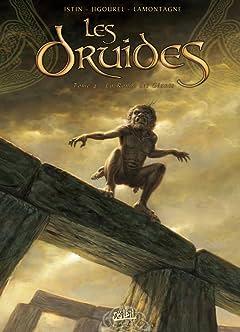 Les Druides Vol. 4: La ronde des géants